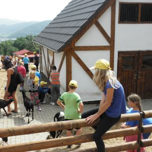 Příměstský tábor- 20.8.2015-ZOO Ústí nad Labem